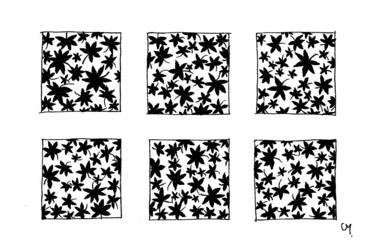 Motifs Floraux - petit - 9