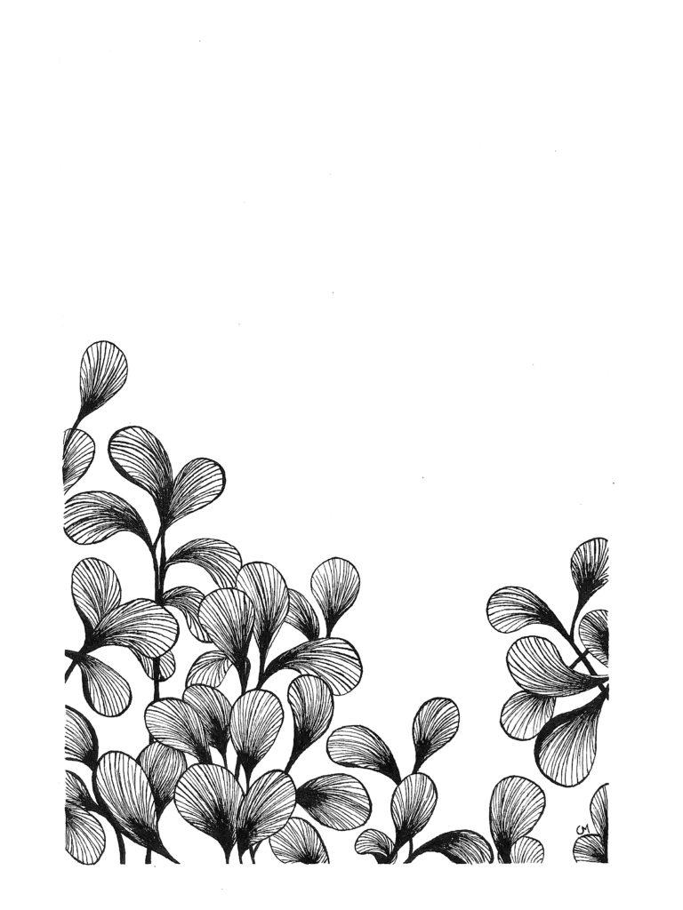 Motif Floral 2_1
