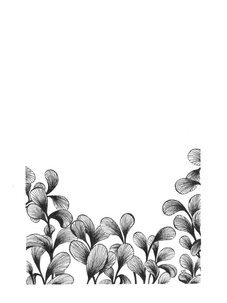 Motif Floral 2_2
